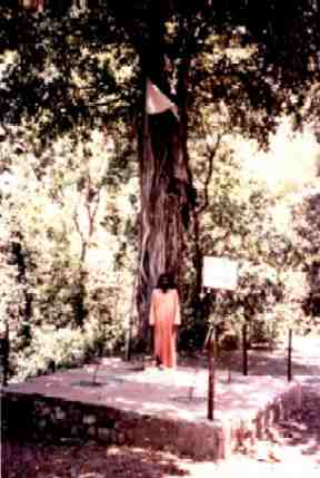 Swami Shankardasji stands at site where Sri Tat Wale Baba was murdered.